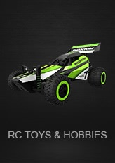 RC Toys & Hobbies
