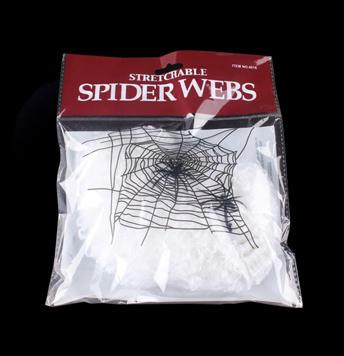 Halloween Spinnennetz