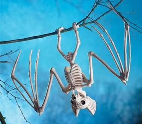 Skeleton hängender Schläger-Knochen Halloween gruselig