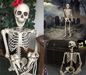 Halloween-Simulation, die Skeleton menschlichen Körper-Knochen hängt